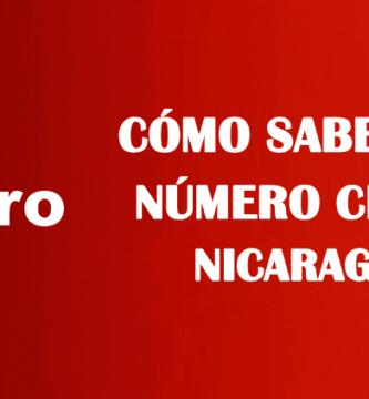 Cómo saber mi número Claro Nicaragua sin saldo